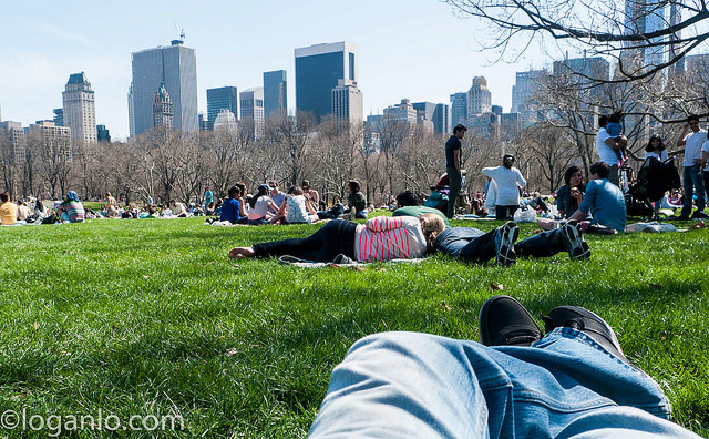 Relaxing on a summer day in Central Park
