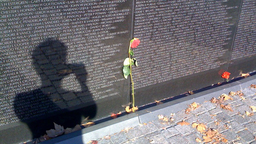 Wilted rose by the Vietnam War Memorial